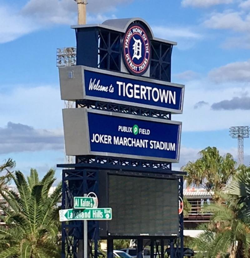 Tiger's Spring Training
